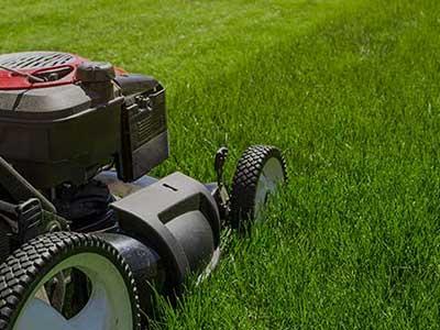 Entretien des espaces verts avec Roussel paysagiste